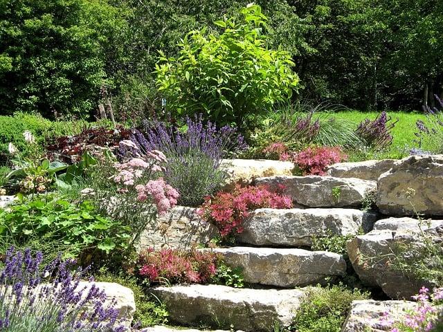 Zehn Ideen Fur Den Vorgarten Garten Und Freizeit